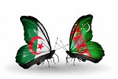 Two Butterflies With Flags On Wings As Symbol Of Relations Algeria And Turkmenistan