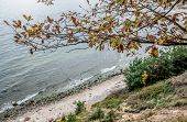 Autumn In Gdynia