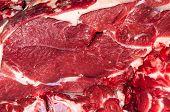 Fresh Beef,