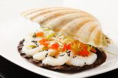 foto of scallop shell  - scallops presented on a scallop shell - JPG