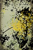 Grunge Ribbed Blossom Silhouette Print Isolated On Black