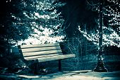 Park Bench In Winter