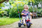 Active Blond Kid Boy Driving Tricycle Or Bicycle In Domestic Garden