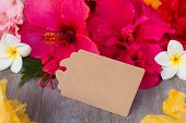 pic of hibiscus  - colorful  hibiscus flowers  as a frame with empty paper tag - JPG