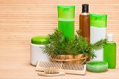 picture of gift basket  - Natural hair care cosmetics and accessories - JPG