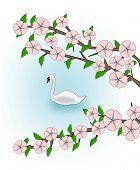 Flowering and Swan