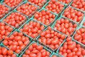 Grape Tomato