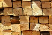 picture of neat  - Neatly stacked firewood - JPG