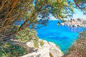 picture of shoreline  - Capo Testa shoreline on a clear day - JPG
