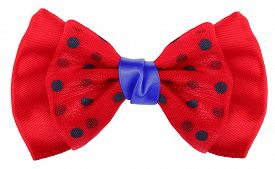 pic of bow tie hair  - Hair bow tie red with blue dots - JPG