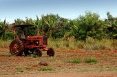 foto of workhorses  - an old tractor captured in the rural areas of molokai hawaii - JPG