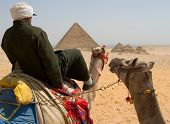 Camel Riding Near Pyramids