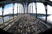 Marathon Run Sydney