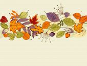 image of fall leaves  - Autumn colorful leaves background for thanksgiving design - JPG