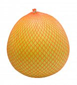 picture of pamelo  - Pomelo fruit wrapped in a plastic - JPG