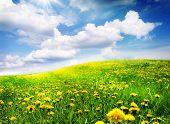 Постер, плакат: Весенний пейзаж