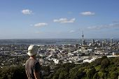 Landscape Of Auckland City 2