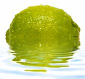 Lime With Water Drops And Reflection On Water