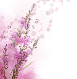 stock photo of floral design  - Beautiful Floral Border - JPG