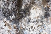 old wall plaster