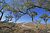 pic of four-wheel drive  - 4 wheel drive exploring Flinders National Park in Australia - JPG