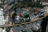 stock photo of shaky  - Sherpa and yak crossing suspension bridge crossing narrow gorge near Pangboche Khumbu Himal Nepal Asia - JPG