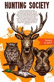 Hunting Sport Banner With Wild Animal And Bird. Deer, Duck, Boar And Owl Sketches For Announcement P poster