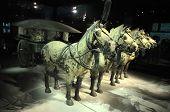 The Terracotta Horses In Mausoleum