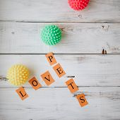 Colored Rubber Squeaky Ball Toys For Pets And Letters Love Pets On White Board Background. Pet Care  poster
