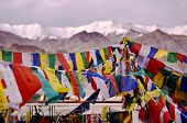 tibetan prayer flags, India, Leh