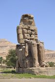 Statue Of The Colossus Of Memnon