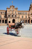 Seville - Horse Drawn Carriage Tour Donkey At Plaza De Espana