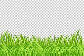 Grass Border. Vector Illustration. Realistic Isolated Green Grass Borders On The Transparent Backgro poster