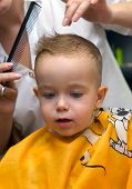 Haircut Little Boy