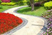 Beautiful summer garden with a walkway winding its way through
