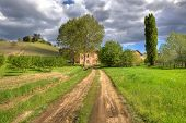 Rural unpaved road among green meadows leading toward winery under cloudy sky in Piedmont, Northern