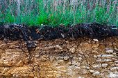 The Curb Erosion From Storms. To Indicate The Layers Of Soil And Rock. Nature Cross Section Soil Und poster