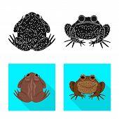 Vector Illustration Of Wildlife And Bog Logo. Collection Of Wildlife And Reptile Stock Vector Illust poster