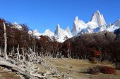 Beautiful Nature Landscape With Mt. Fitz Roy As Seen In Los Glaciares National Park, Patagonia, Arge