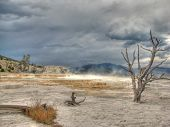 Yellowstone Mammoth Hot Springs in Wyoming, USA