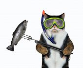 The Cat Underwater Hunter In A Mask And A Snorkel With A Spear Gun Killed A Big Fish In The Sea. Whi poster