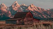 The Famous John Moulton Barn At Sunrise In The Historic Mormon Row District Of Grand Teton National  poster