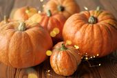 Halloween And Thanksgiving. Autumn Concept. Orange Pumpkins With A Shining Garland On A Wooden Table poster