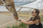 Happy Young Woman Watching And Feeding Giraffe In Zoo. Young Attractive Tourist Woman Feeds Cute Gir poster