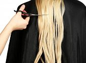stock photo of hair streaks  - Haircut blond hair on white background - JPG