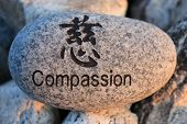 stock photo of reinforcing  - Positive reinforcement word Compassion engrained in a rock - JPG