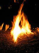 Flames 4