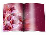 pic of zingiber  - book whith the typical tropical rain forest flowers and stars - JPG
