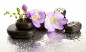 Spa piedras y flor de color púrpura, aislado en blanco