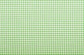 Checkered Green Fabric